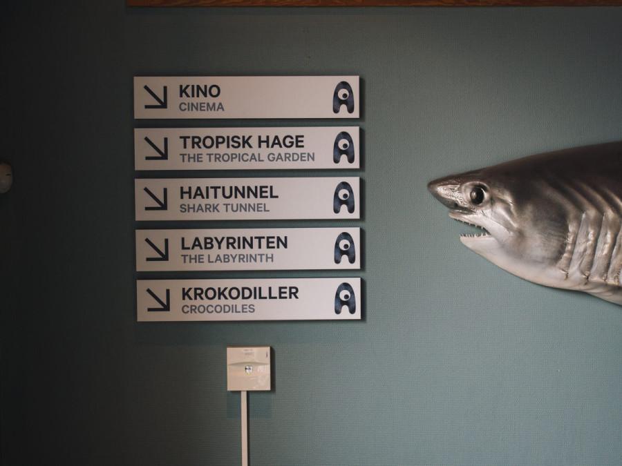 Atrakcje w Bergen